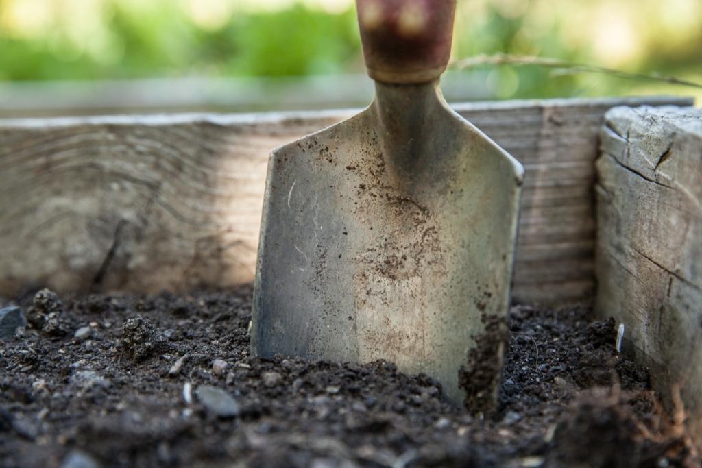 Digging deeper into faith