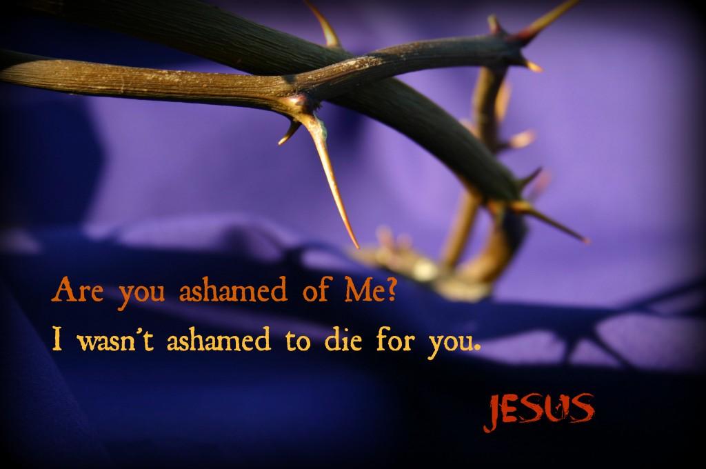 thorns ashamed 4