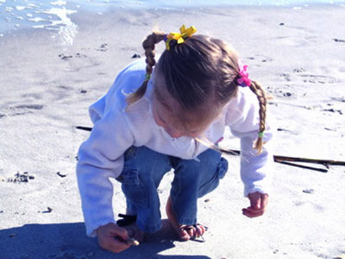 Beach Discovery