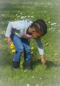 Girl picking flowers - Genes, the oldest writing in the world